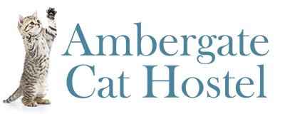 Ambergate Cat Hostel